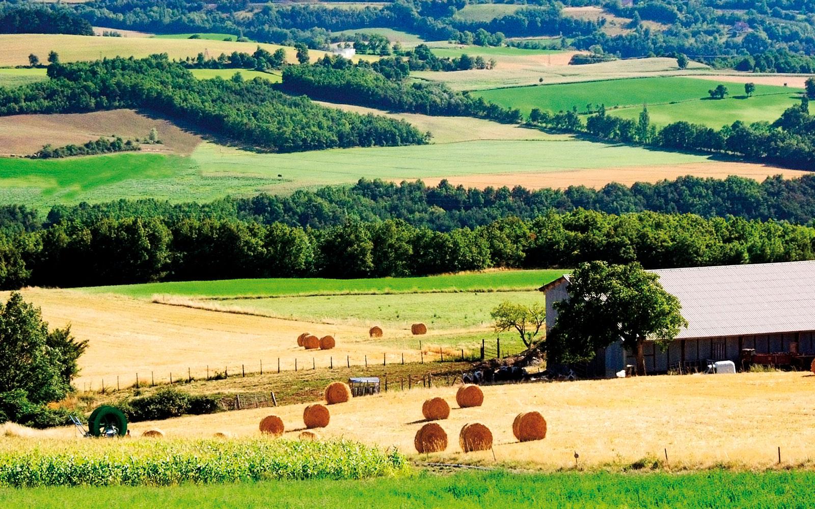 Les meilleures fermes auberges de la région