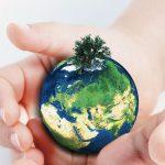 Environnement-Ecologie-Terre-iSt_000016352076
