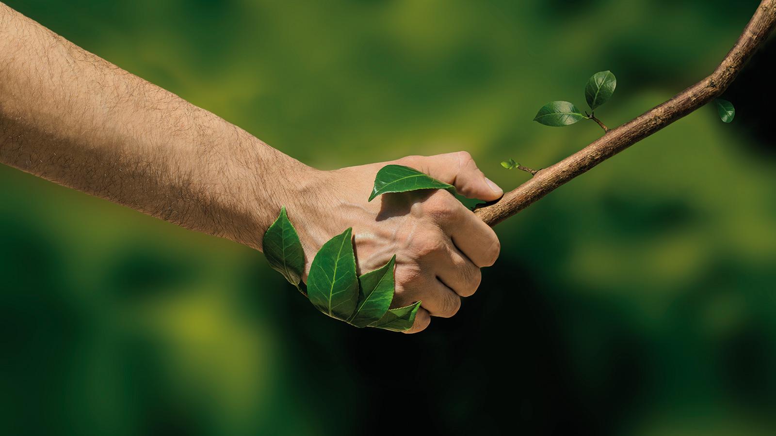 Ecologie-Environnement1