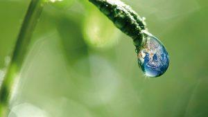 Environnement-Ecologie-Terre