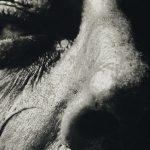 Exposition-dali-grimaldi-forum-monaco-actualites-couverture