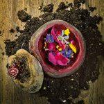 rodrigo-de-la-calle-recette-essence-betterave