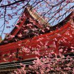 carnet-voyage-japon